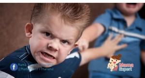 กฏเหล็ก 17ข้อ ในการดูแลเด็กก้าวร้าวเพื่อให้เกิดพฤติกรรมเชิงบวกอย่างได้ผล