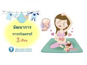 พัฒนาการทารกในครรภ์ 3 เดือน แม่ท้อง 3 เดือนลูกเป็นอย่างไร