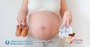 ตรวจเพศลูก 6 สัปดาห์รู้เพศทารกเป็นไปได้อย่างไร  แม่นยำไหมนะ!!! มาดูกัน