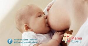อาหารแม่ให้นมบุตร 10 ประเภท ที่แม่ให้นมบุตรต้องรับประทาน