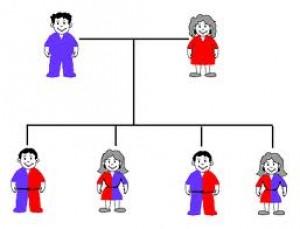 การปลูกถ่ายเซลล์ต้นกำเนิดเม็ดเลือด