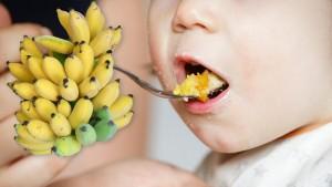 ป้อนกล้วย ป้อนอาหารก่อน6เดือน เด็กเสี่ยงลำไส้อุดตัน!กระเพาะแตก!