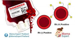 หมู่เลือด Rh+ และ Rh- สำคัญกับทารกในครรภ์อย่างไร