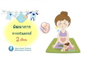พัฒนาการทารกในครรภ์ 2 เดือน แม่ท้อง 2 เดือนลูกเป็นอย่างไร
