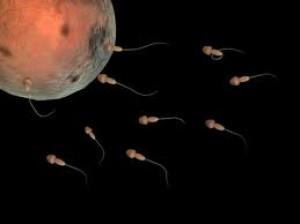 การทำอิ๊กซี่ (ICSI – Intracytoplasmic sperm injection)