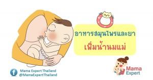 อาหารสมุนไพรและยาเพิ่มน้ำนมแม่ที่ปลอดภัย