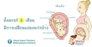 ตั้งครรภ์ 8 เดือน (ท้อง 8 เดือน) การเปลี่ยนแปลงของแม่และพัฒนาการทารกในครรภ์ขณะตั้งครรภ์ 8 เดือน