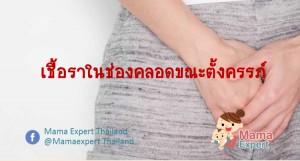 เชื้อราในช่องคลอดขณะตั้งครรภ์ อันตรายแค่ไหน แม่ท้องต้องตรวจรักษาอย่างไร