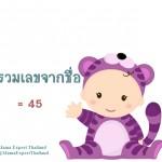 ตั้งชื่อลูก ตั้งชื่อมงคลตามตัวเลข ผลรวมเลขศาสตร์จากชื่อลูก เท่ากับ 45 แปลผลได้ที่นี้