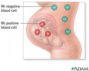 ประโยชน์ของการตรวจสุขภาพก่อนการตั้งครรภ์