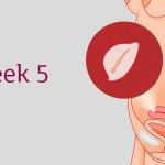 อายุครรภ์ 4 สัปดาห์ ลูกน้อยและคุณแม่เปลี่ยนแปลงอย่างไร
