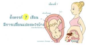 ตั้งครรภ์7 เดือน (ท้อง7เดือน) การเปลี่ยนแปลงของแม่และพัฒนาการทารกในครรภ์ขณะตั้งครรภ์7 เดือน