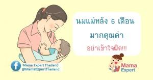 คุณค่าของนมแม่หลัง 6 เดือน เรื่องที่แม่หลายคนเข้าใจผิด