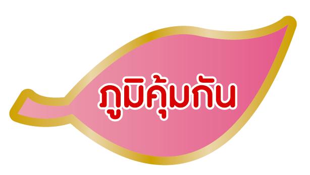15_06_RL_006